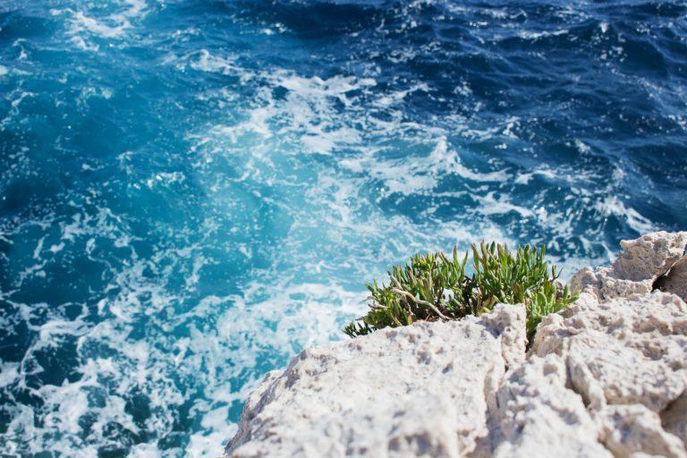 Nice mer